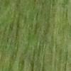 سبز کد 114